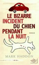 bizarre_incident_chien